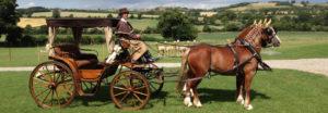 Sposa in carrozza - il calesse